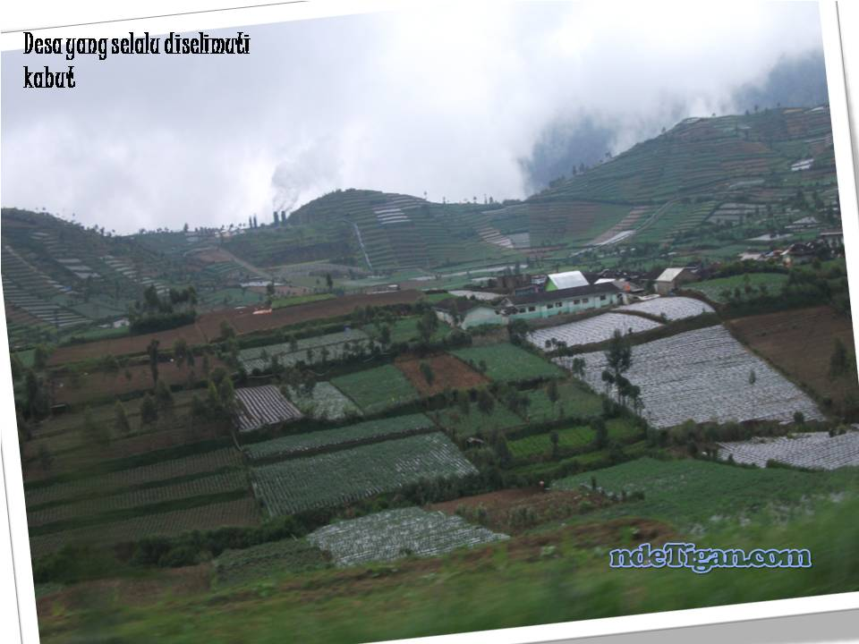 desa yang selalu diselimuti kabut