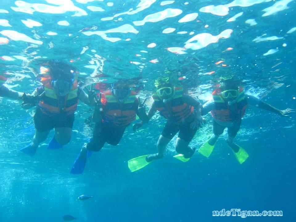 snorkeling asik!