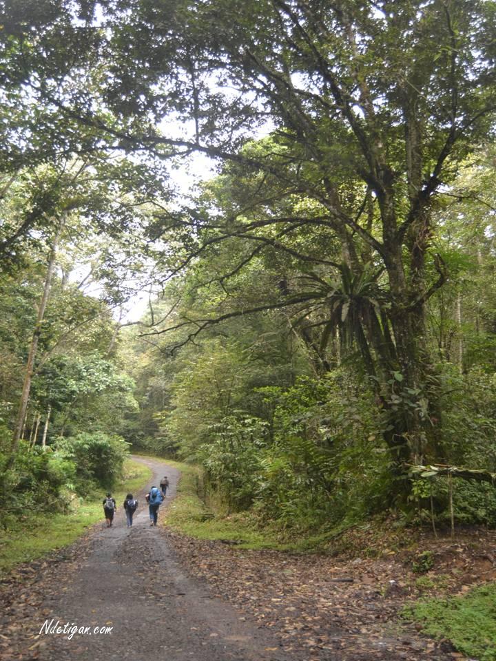 Jalur Pendakian Desa Jaranguda